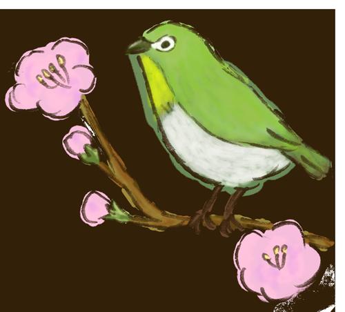 梅とメジロ手書き風イラスト
