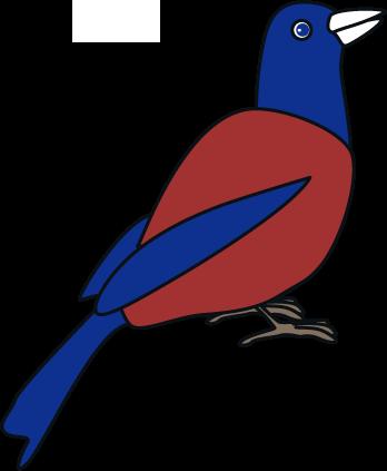 ルリカケス(鳥)