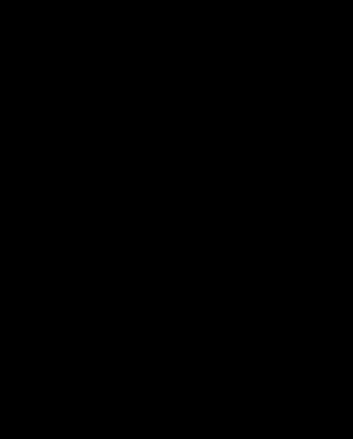 蜘蛛の巣(ハロウィン)のイラスト